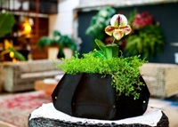 Woolly Pockets Lana 8-Sided Recycled Black Felt Planter